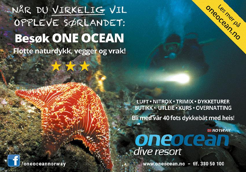 Annonsebanner One Ocean