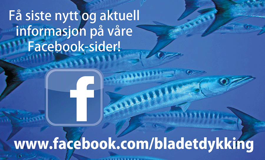 Facebook 09