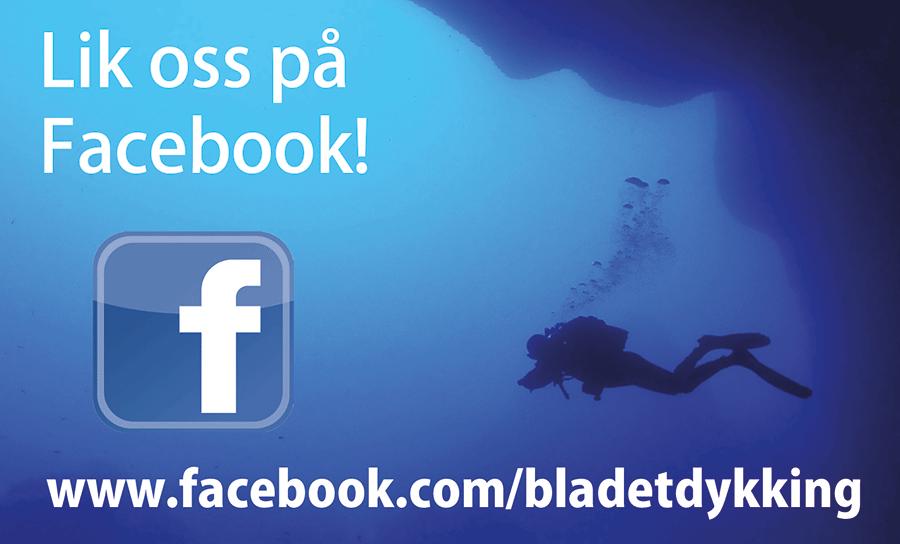 Facebook 15