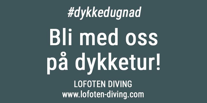 Korona-dykketur-lofoten-850px