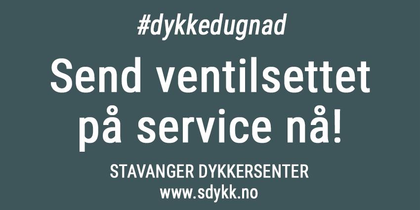 Korona-service-sdykk-850px