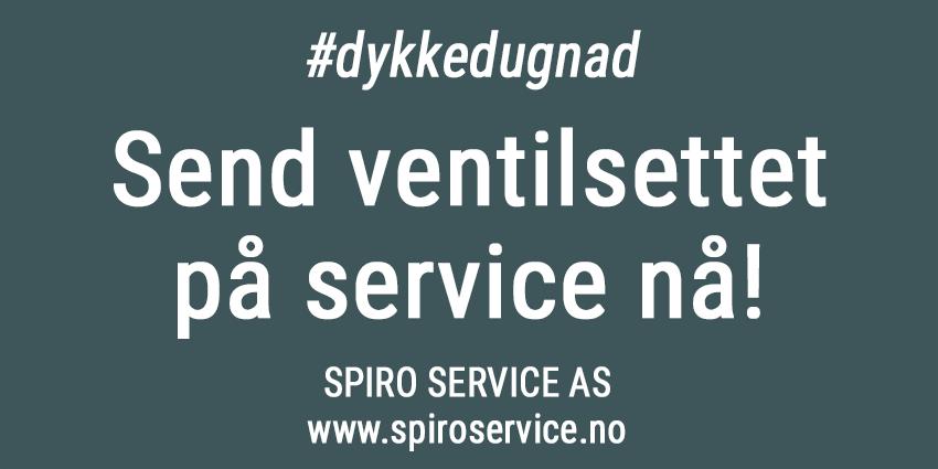 Korona-service-spiro-850px