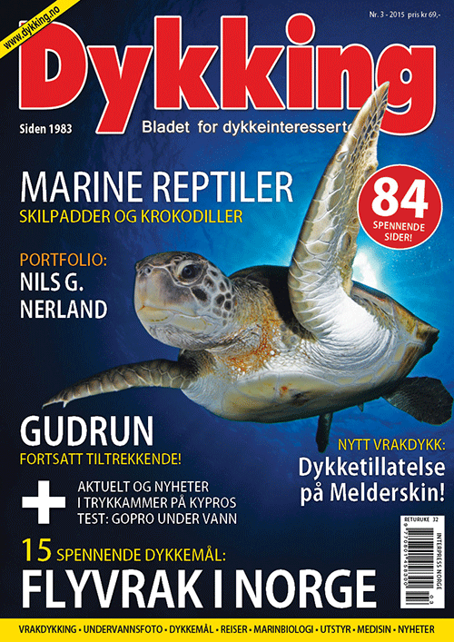 Dykking 3/2015