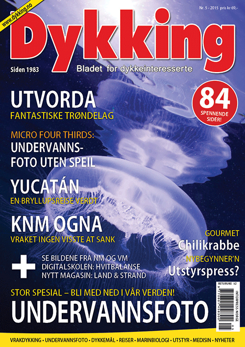 Dykking 5/2015