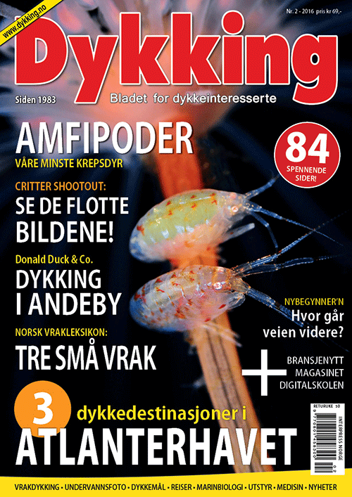 Dykking 2/2016